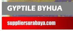 logo byhua